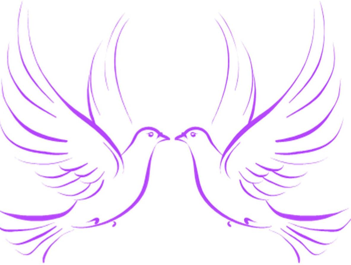 Wedding Doves   Free Images At Clker Com   Vector Clip Art Online