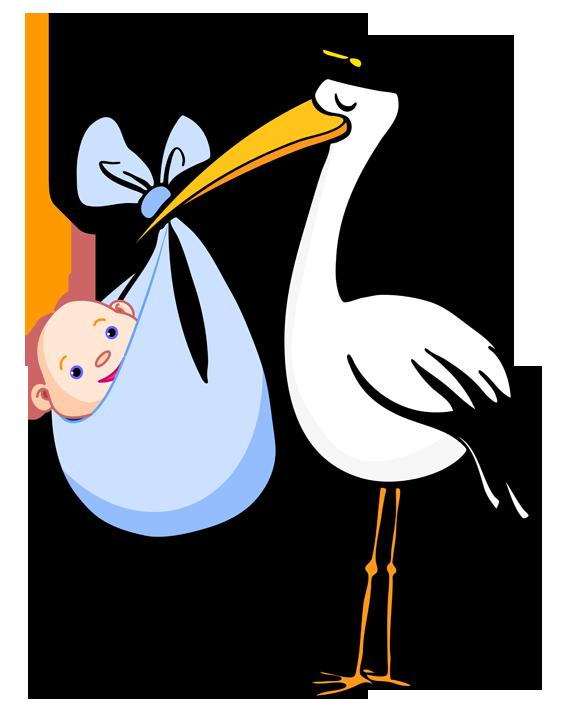 Delivery Stork  TV Tropes