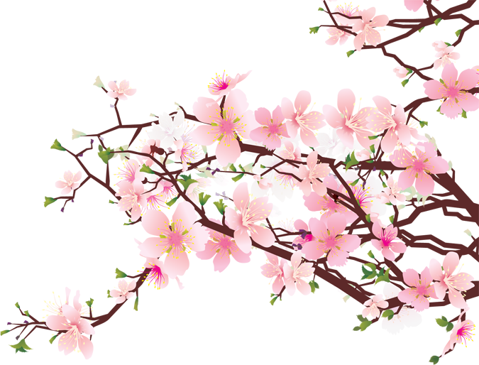 Blossom Tree Clipart - Clipart Kid