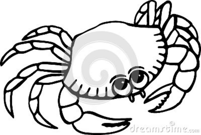 Crab Clipart Black And White Beach Clipart Black And Whitethe Best