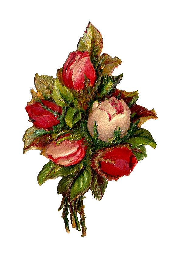 Antique Images  Free Flower Clip Art  Red And Pink Rose Bouquet Clip