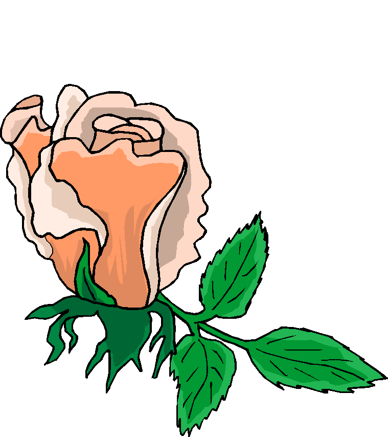 Beautiful Pink Rose Free Flower Clipart   Free Microsoft Clipart
