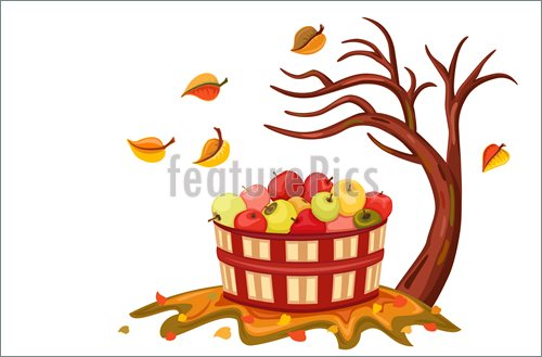 Rich Apple Harvest In Autumn