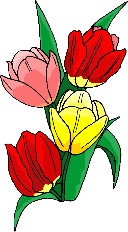 Colorful Flower Free Clipart From Free Microsoft Clipart Download This