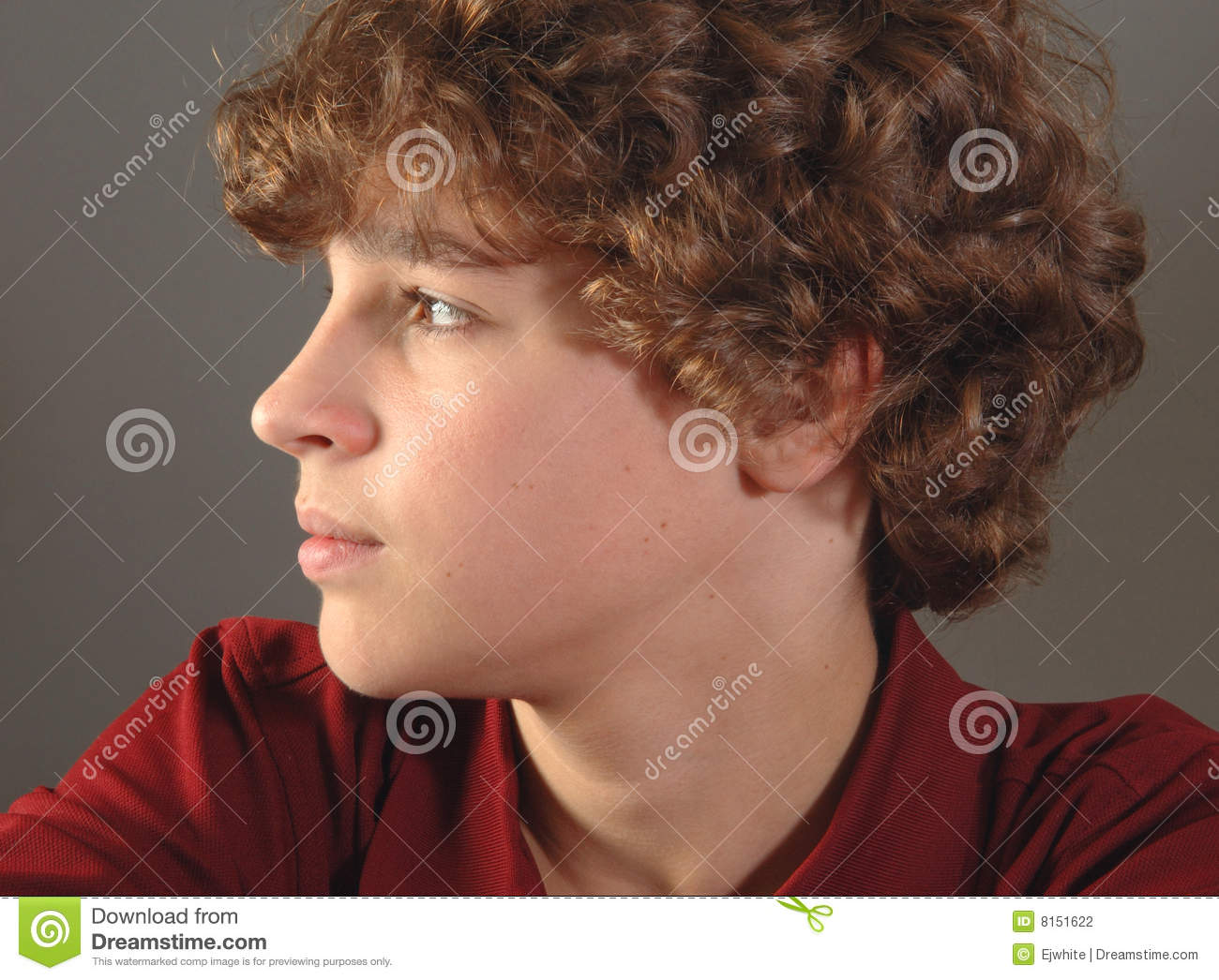 Handsome 12 Year Old Boy Stock Photography   Image  8151622