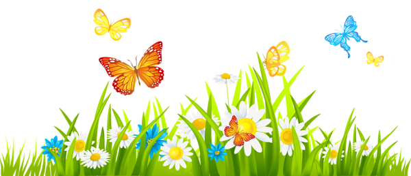 Grass Ground With Flowers And Butterflies Png   Clickandlol