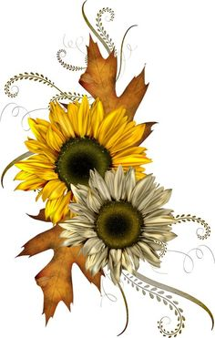 Fall Sunflower Clipart - Clipart Kid