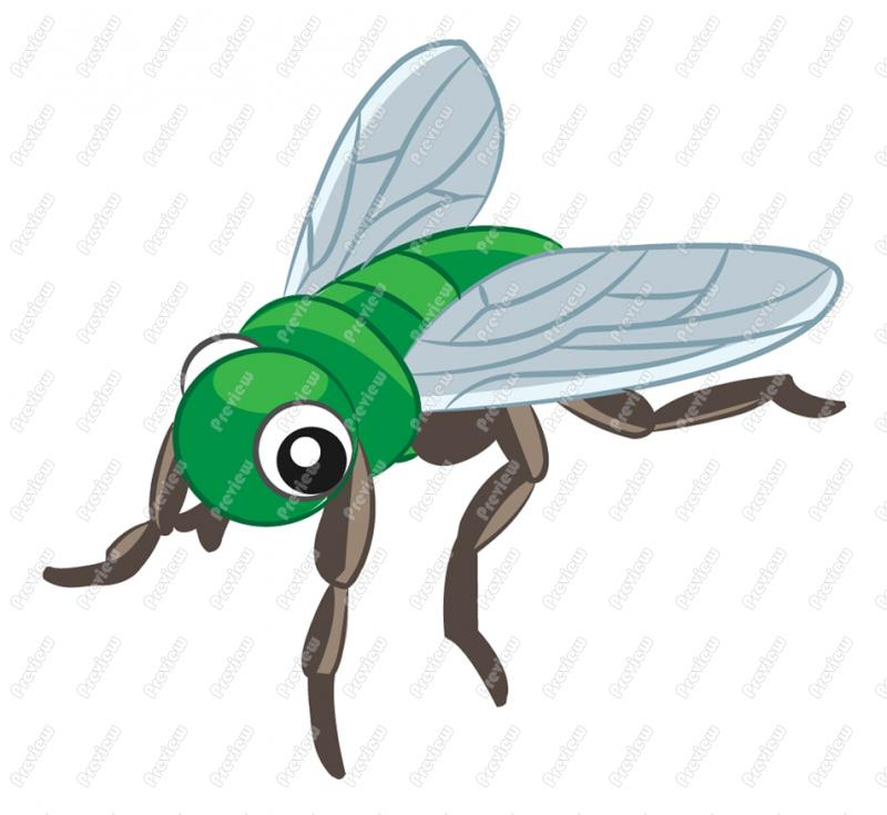 animated fly clipart - photo #19