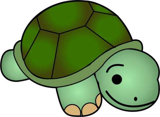 Cute Turtle Clip Art   Clipart Panda   Free Clipart Images