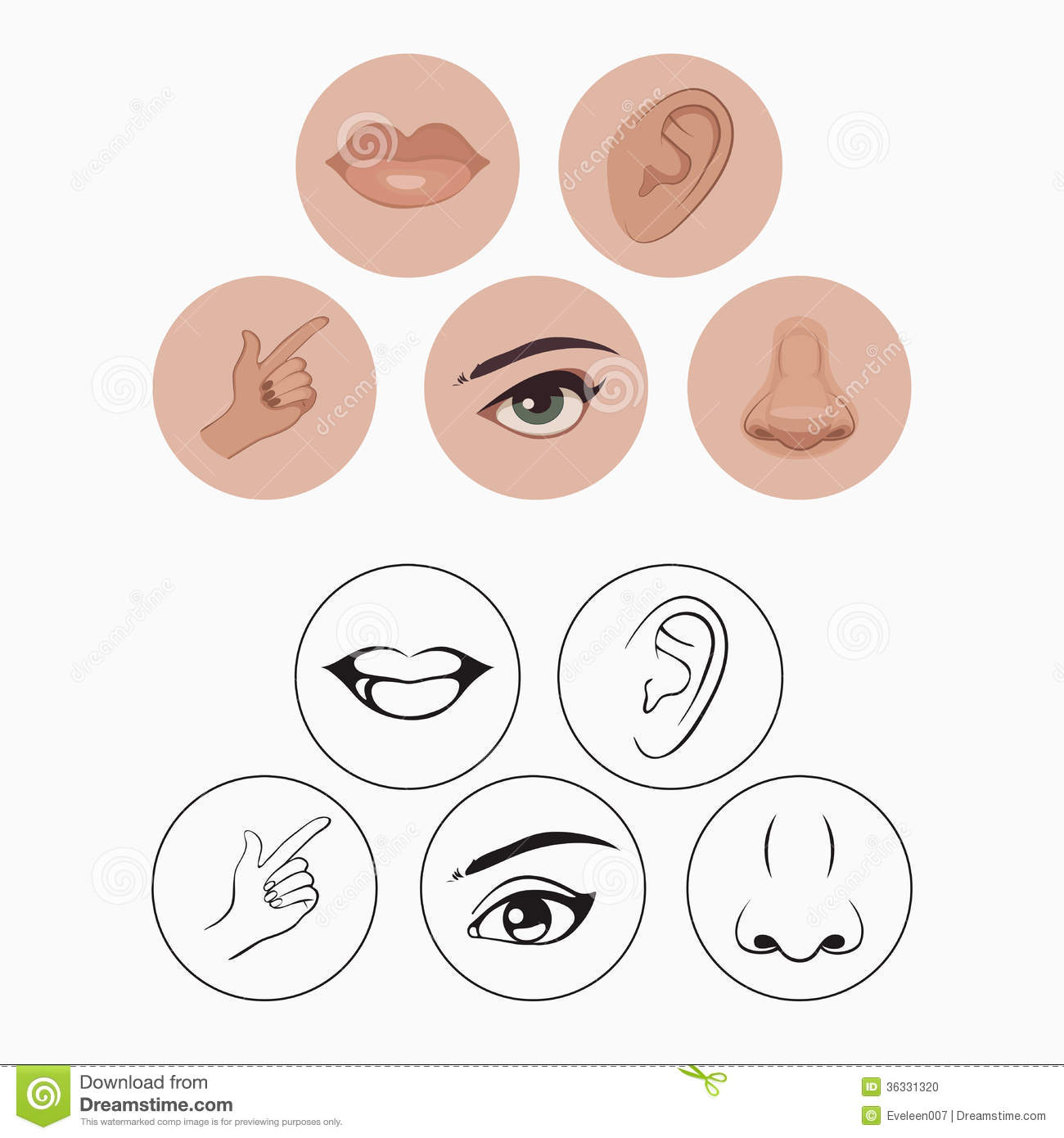 Five Senses Clipart - Clipart Kid