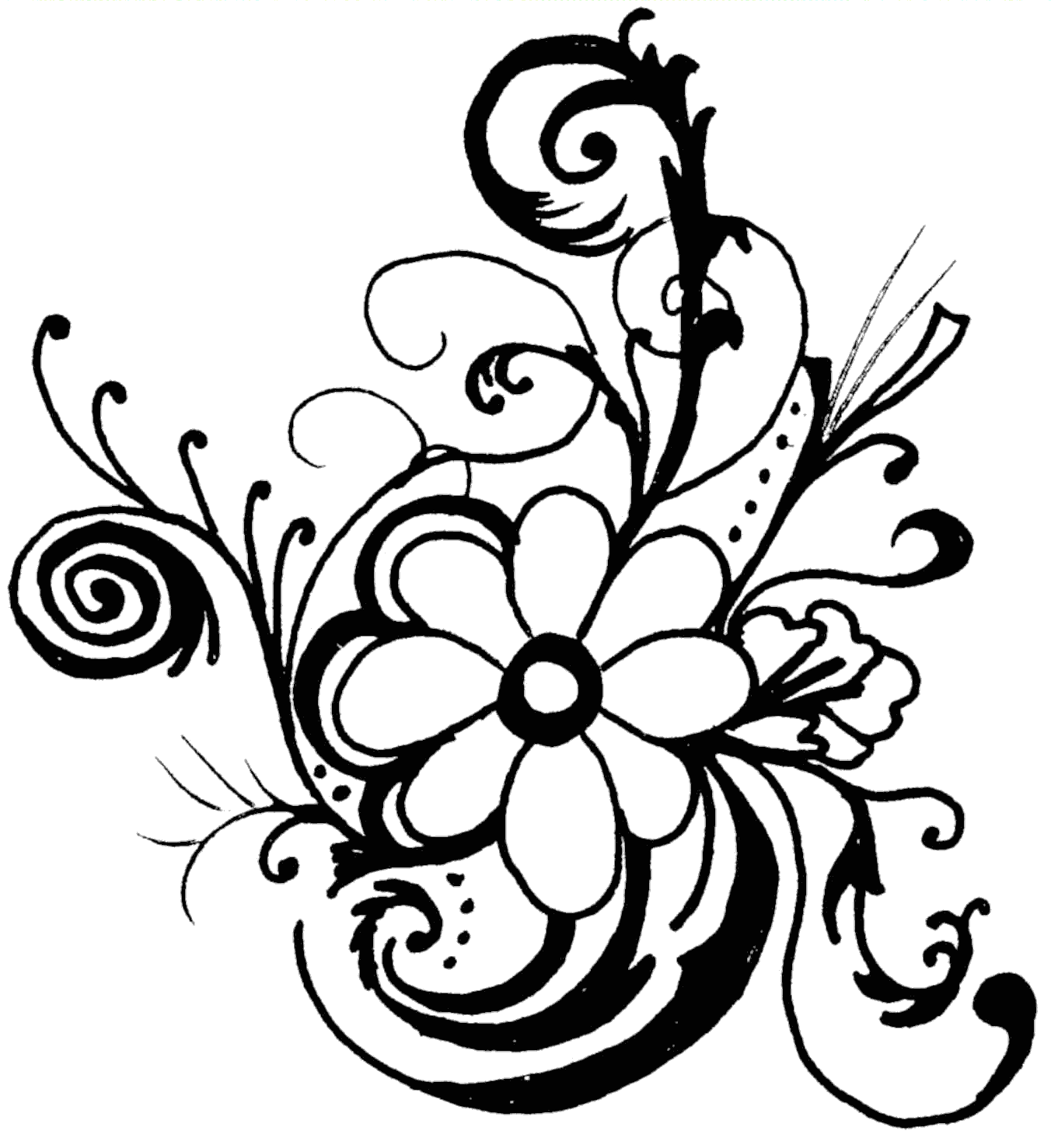 Tropical Flower Line Drawing : Tropical flower black and white clipart suggest