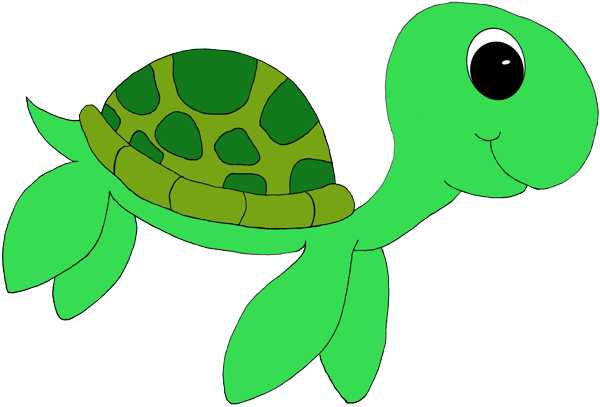 Sea Turtle Clip Art   Home Design Gallery