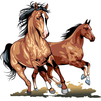 Watch more like Herd Of Horses Clip Art