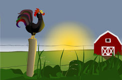 Rooster Morning Clipart Early Morning Rooster Stock