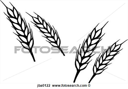 Clip Art   Bunch Of Wheat B W  Fotosearch   Search Clipart