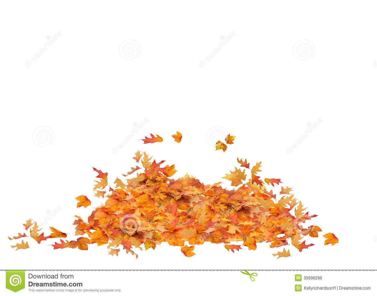 Pile Of Fall Leaves Isolated Orange Red Yellow And Brown Colors