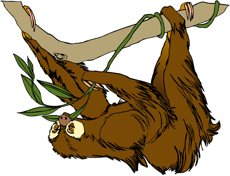 Free Sloth Clipart