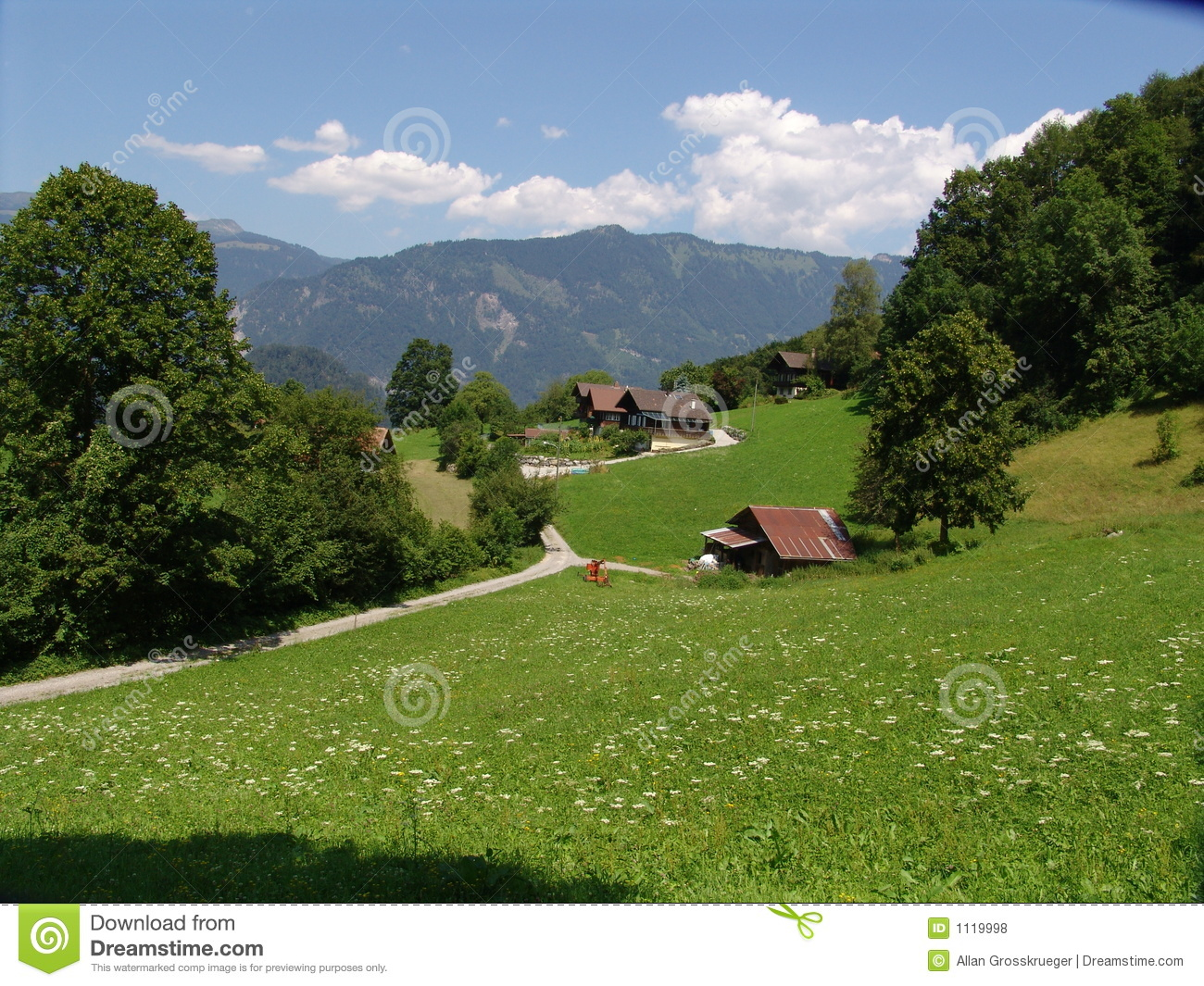 Landscape Pastoral Scene Shot In Summertime Near Wilderswil