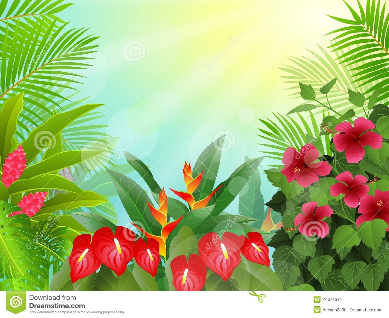Tropical Forest Background Stock Image   Image  24671391