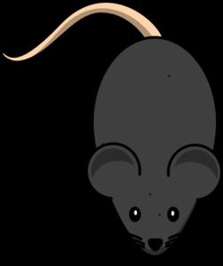 Clip Art Mice Clipart black mice clipart kid mouse clip art at clker com vector online royalty