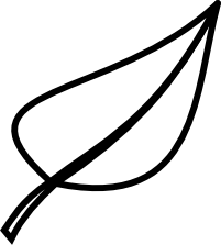 Leaf Clipart Black And White Outline Leaf Clip Art Black And White