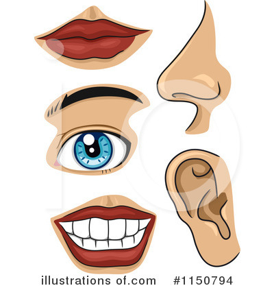 Body Parts Clipart - Clipart Suggest