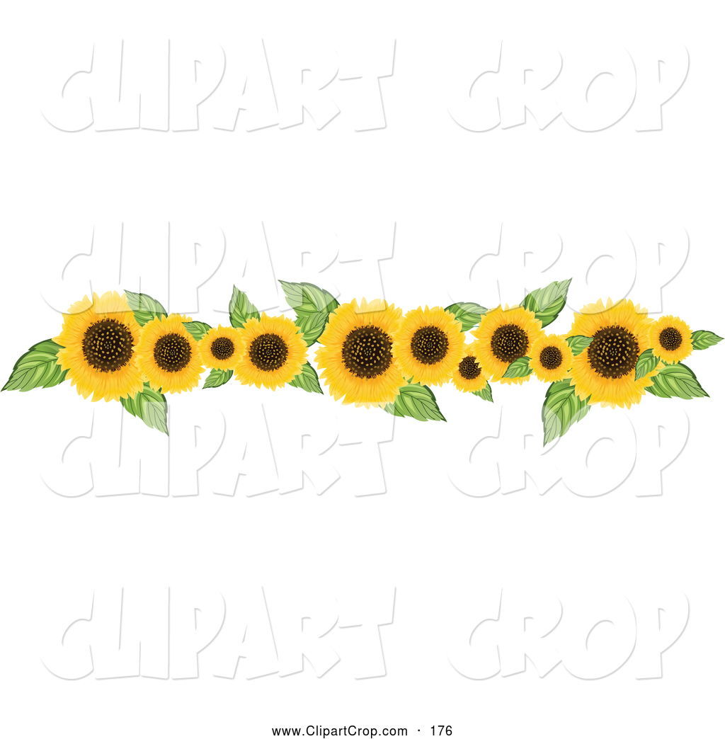 Sunflower Border Clipart Clip Art Vector Of A Border Or