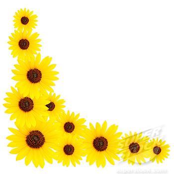 Sunflower bathroom - Sunflower Border Clip Art Free Sunflower Border Clipart Clipart Kid