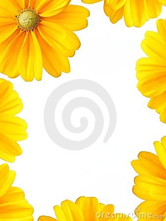 Sunflower Border Design Sunflower Border Frame 10889170 Jpg