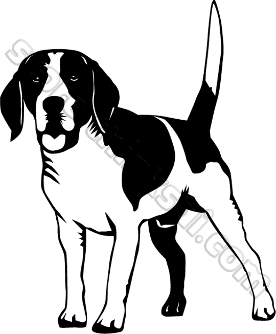 Beagle Clip Art   Boo The Dogs
