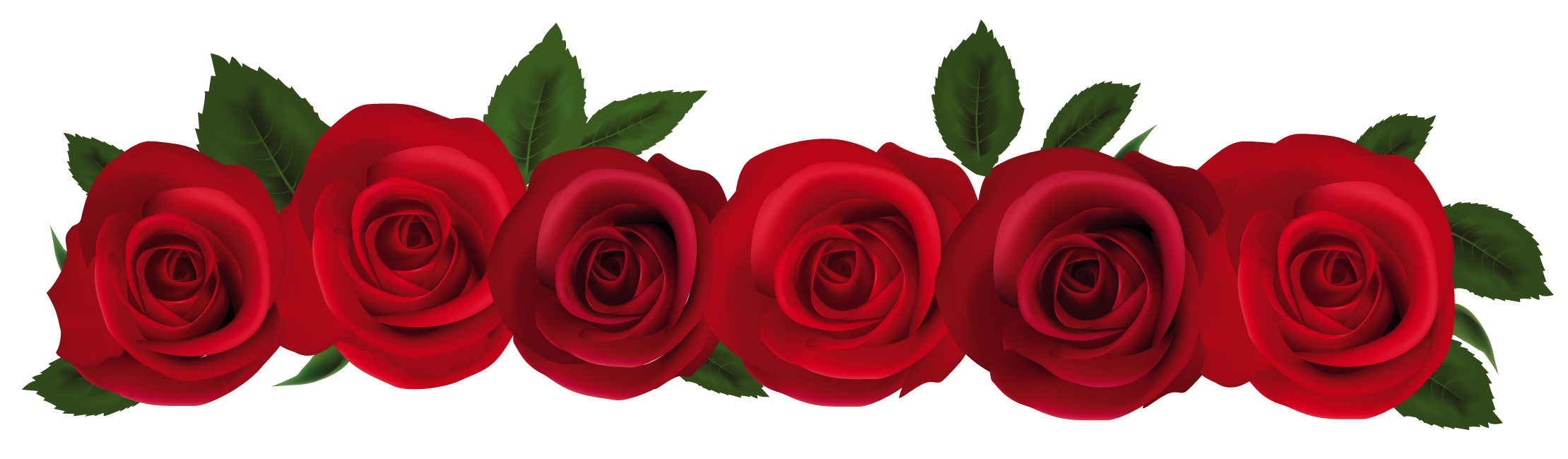 Roses Images Free Cliparts That You Can Download To You Computer And
