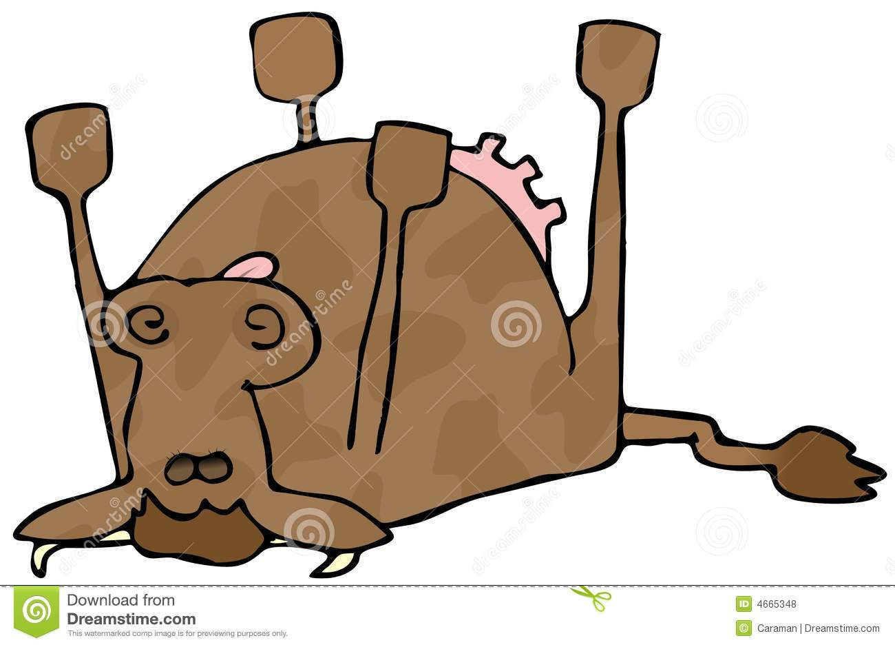 This Illustration Depicts A Cow Dead And Laying On Its Back