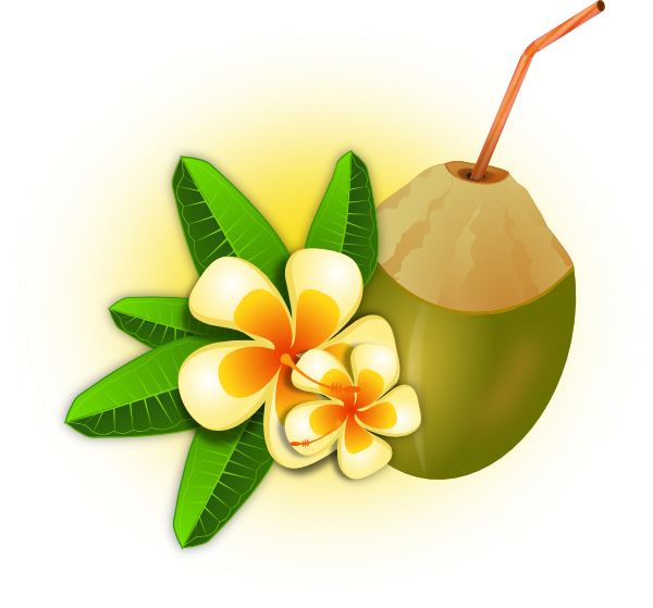 Flower With Coconut Drink Clip Art At Clker Com   Vector Clip Art