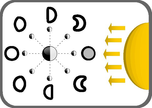 Diagram Of Moon Phases Clip Art At Clker Com   Vector Clip Art Online