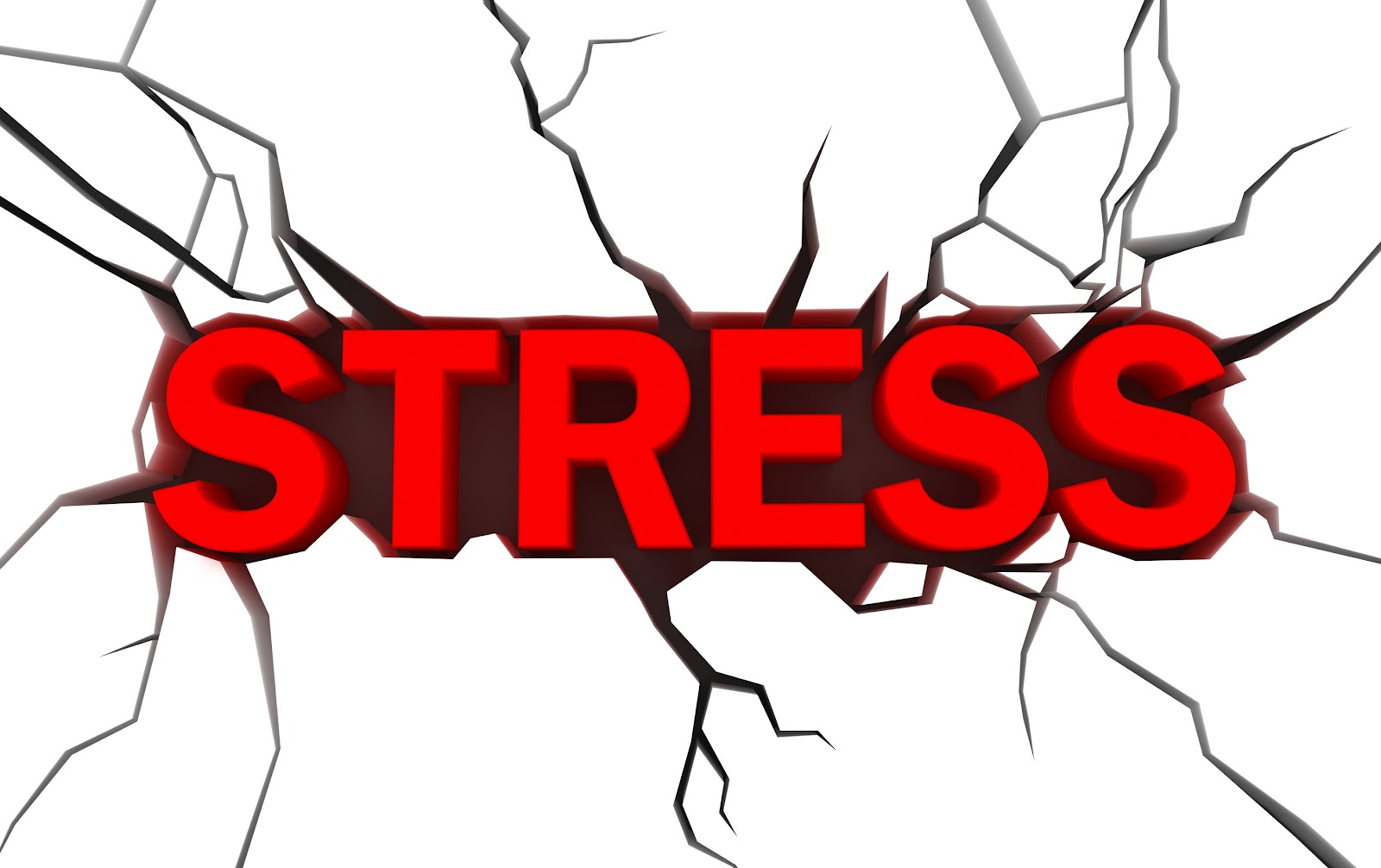 Stress  The Effects On Your Health   Md Home Health