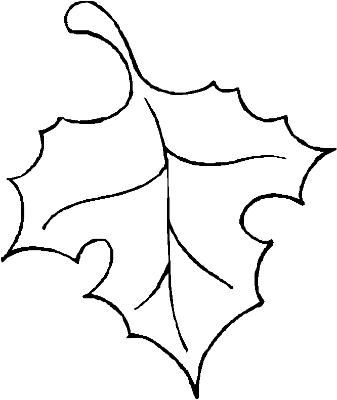 Line Art Kindergarten : Tree outline with leaves clipart suggest