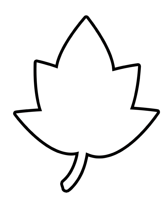 Clip Art Leaf Outline Clip Art maple leaf outline clipart kid pumpkin clip art panda free images