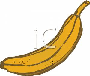 Big Yellow Banana   Royalty Free Clipart Picture