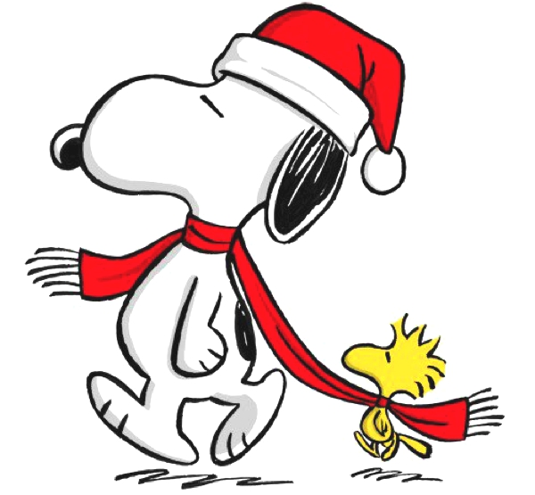 Snoopy Christmas Images   Quotes Lol Rofl Com