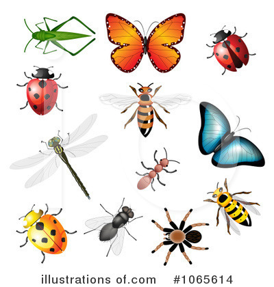 Bee Clip Art For Teachers Flying Bumble Bee Clip Art Honey Bee Clip