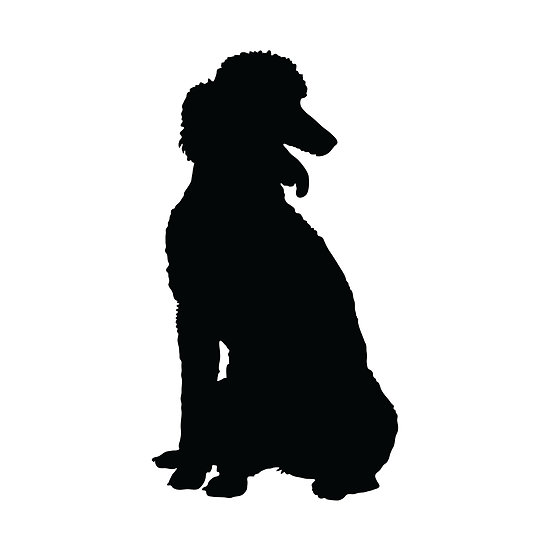 Poodle Silhouette Poodle Silhouette By Maria