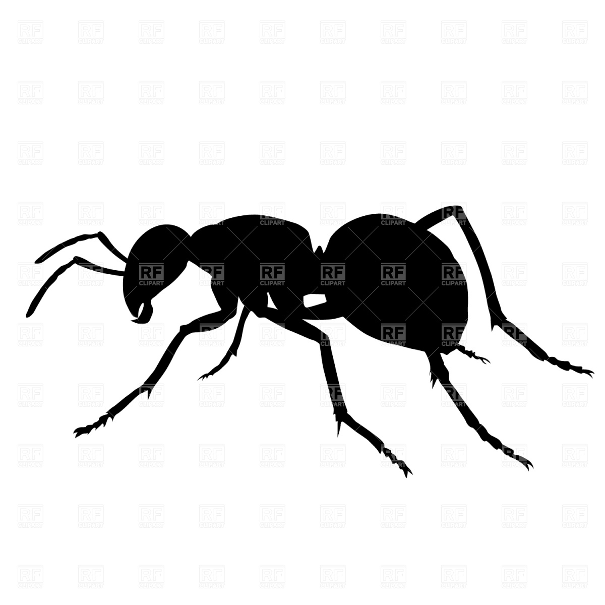 Ant Silhouette Download Royalty Free Vector Clipart  Eps