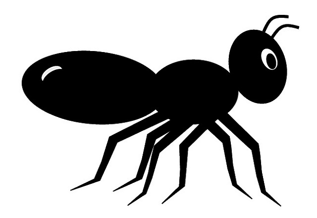 Black Ant Clip Art Cute Style Lge 11cm Long   Flickr   Photo Sharing