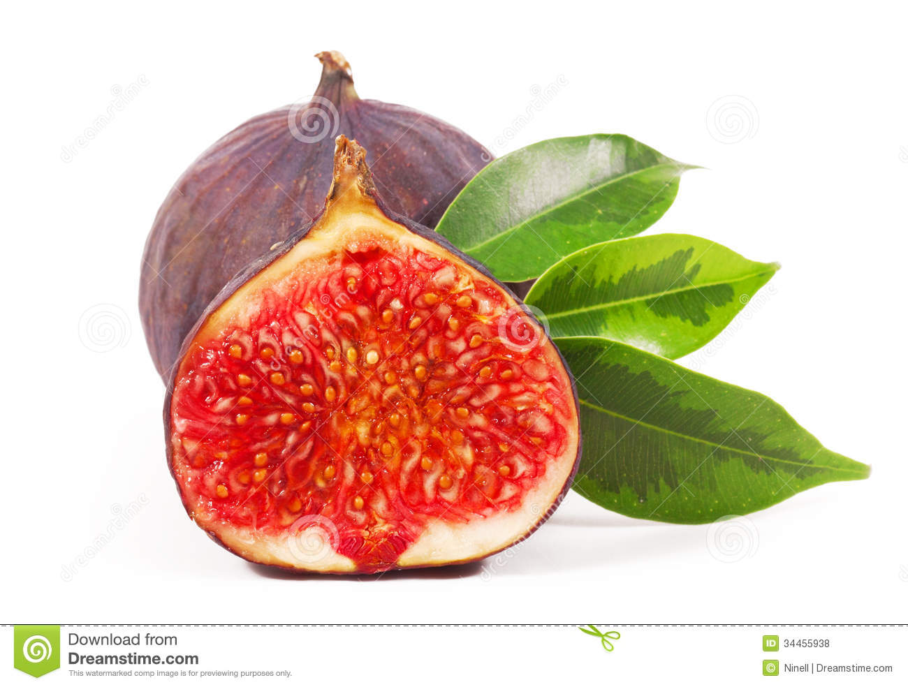 Fig Royalty Free Stock Photos   Image  34455938