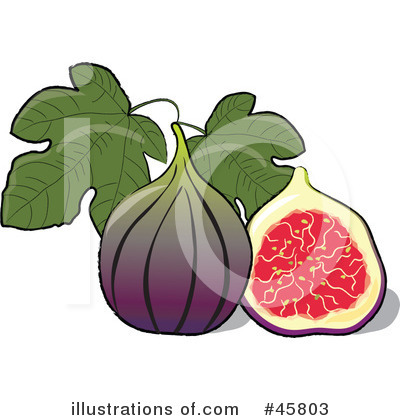 Royalty Free  Rf  Fig Clipart Illustration By Pams Clipart   Stock