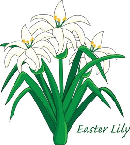 Easter Lily Clipart Image   Easter Lily