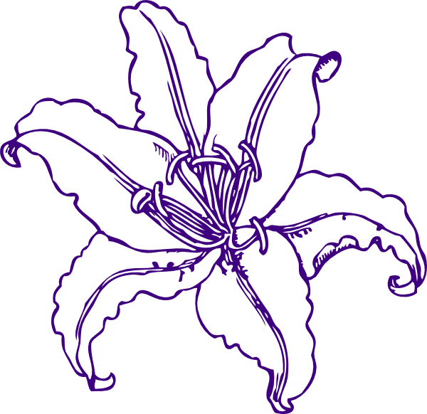 Clip Art Lily Clip Art purple lily clipart kid lilly clip art at clker com vector online royalty