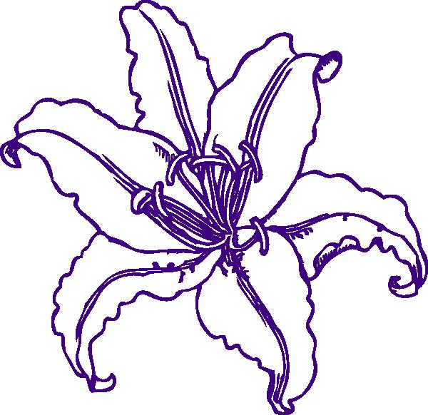 Purple Lilly Clip Art At Clker Com   Vector Clip Art Online Royalty