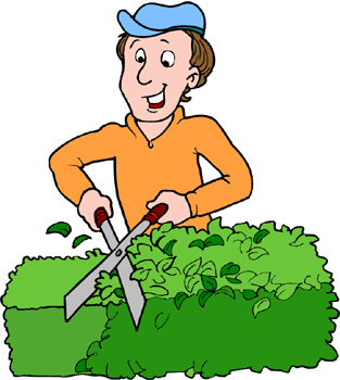 Pruning Hedges Clip Art Cliparts