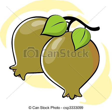 Guava   Illustration Of Two Guava Csp3333099   Search Vector Clipart